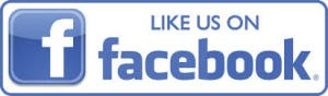 Like us on Facebook button logo